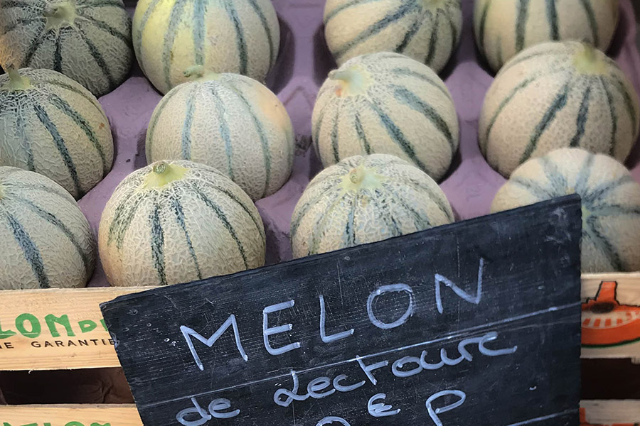 Gascony is famous for the quality of its produce. Photo of market melons